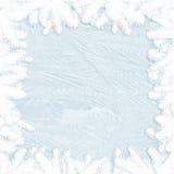 在玻璃和枝杈边界-冬天框架的白色霜 库存图片