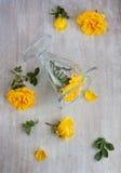 在玻璃和玫瑰的顶视图 免版税图库摄影