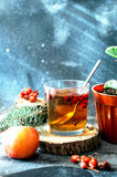 在玻璃杯子的新近地酿造的茶在蓝色背景 橙色热的饮料,选择聚焦 与红色berri酊的新鲜的清凉茶  库存照片