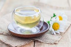 在玻璃杯子,春黄菊的甘菊茶在背景开花 图库摄影