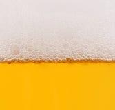 在玻璃特写镜头射击的啤酒 免版税图库摄影