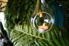 在玻璃球形的蜡烛 以蕨为背景 免版税库存图片