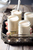 在玻璃瓶子的希腊酸奶在金属葡萄酒盘子 免版税图库摄影