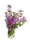 在玻璃瓶子的狂放的紫罗兰色花 免版税库存图片