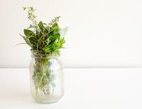 在玻璃瓶子的草本 免版税库存照片