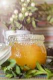 在玻璃瓶子的蜂蜜在反对太阳的五颜六色的桌布 库存图片