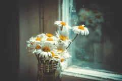 在玻璃瓶子的雏菊在窗口附近的桌上 免版税库存照片