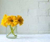 在玻璃瓶子的黄色大丁草 免版税库存照片