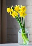 在玻璃瓶子的黄色水仙 图库摄影