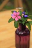 在玻璃瓶的小花花束 免版税图库摄影