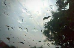 在玻璃的下落 雨 库存照片