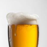 在玻璃的啤酒在白色 库存图片