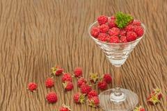 在玻璃的成熟莓 库存照片
