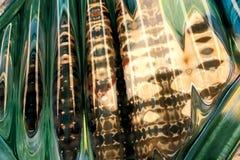 在玻璃的抽象反射 库存图片