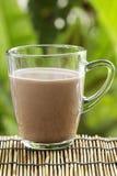 在玻璃的新鲜的巧克力牛奶 免版税库存照片