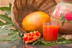 在玻璃的新鲜的木瓜汁用番木瓜果子、叶子和切片 图库摄影