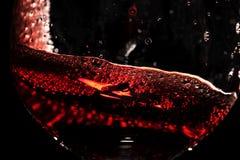 红葡萄酒特写镜头 免版税图库摄影