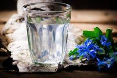 在玻璃的桦树树汁 免版税库存图片