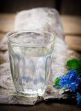 在玻璃的桦树树汁 免版税库存照片