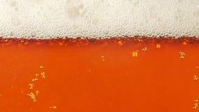 在玻璃的泡沫和低度黄啤酒泡影 特写镜头 慢的行动 股票视频