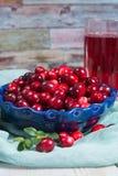 在玻璃的红色蔓越橘汁,在蓝色黏土的蔓越桔鞠躬 免版税库存照片