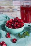 在玻璃的红色蔓越橘汁,在绿色黏土bo的蔓越桔 免版税库存照片