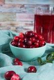 在玻璃的红色蔓越橘汁,在绿色黏土bo的蔓越桔 库存照片