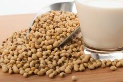 在玻璃的豆奶用大豆和调动瓢 免版税库存图片