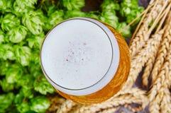 在玻璃的麦子啤酒 库存照片