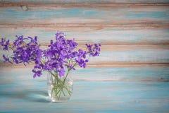 在玻璃的紫色花 库存照片
