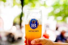 在玻璃的Hofbrauhaus啤酒 免版税库存照片