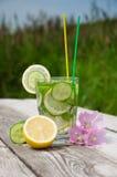 在玻璃的Sassi水 免版税库存照片