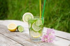 在玻璃的Sassi水 免版税库存图片