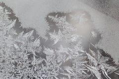 在玻璃窗的独特的冰样式 免版税库存图片