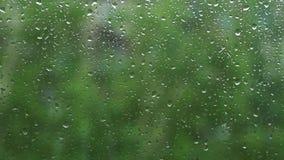 在玻璃窗的雨水下落 股票视频