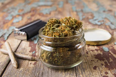 在玻璃罐的大麻芽 免版税库存图片