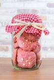 在玻璃罐,有格子花呢披肩织品的盖帽的草莓曲奇饼 免版税图库摄影