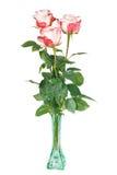 在玻璃花瓶的三朵玫瑰 免版税库存照片