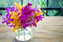 在玻璃花瓶的五颜六色的兰花 图库摄影