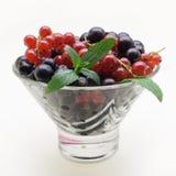 在玻璃花瓶的黑和红浆果在白色背景 库存照片