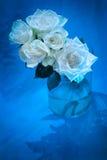 在玻璃花瓶,蓝色题材的白玫瑰 库存照片