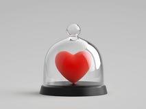 在玻璃钟形玻璃容器下的心脏 库存照片