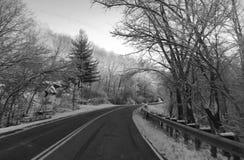 在黑白的冷的冬天路 免版税库存照片