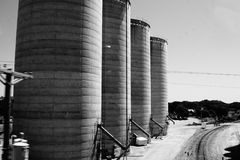 在黑白的四个巨大的筒仓 库存照片