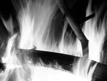 在黑白的火 库存图片