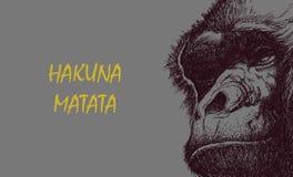 在黑白的猿头 库存照片