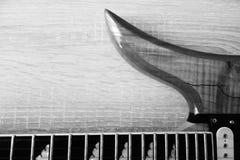 在黑白的电吉他 库存照片