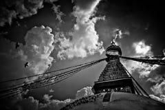 在黑白的Boudhanath寺庙与飞鸟在加德满都,尼泊尔 免版税库存图片