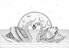 在水的两只天鹅与月亮和星在背景中 Zentangle 免版税库存照片