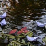 在水的五颜六色的叶子 图库摄影